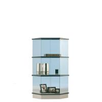 Trapezium vitrine H115